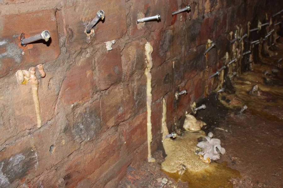 Инъектирование кирпичной стены в Днепре